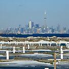 Toronto Skyline Through Winter Haze by mcworldent