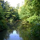 English Woodland River In Early Autumn by mcworldent