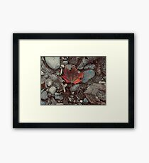 the oncoming cold Framed Print