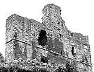 Norham Castle Interior by Ryan Davison Crisp