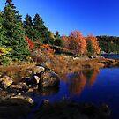 Fall at the Lake by Brian Carey