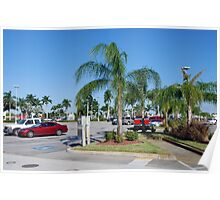 Edison Mall Carpark Poster