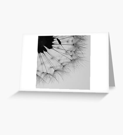 Delicate Imperfection Greeting Card
