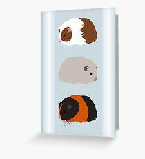Guinea Pig Trio Greeting Card