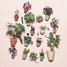 «Plantas en miniatura» de Alita  Ong