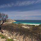 Whisky Bay, Wilsons Promontory. by johnrf