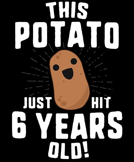 This Potato Just Hit 6 Years Old T Shirt Birthday Boy Girl By 14th Floor