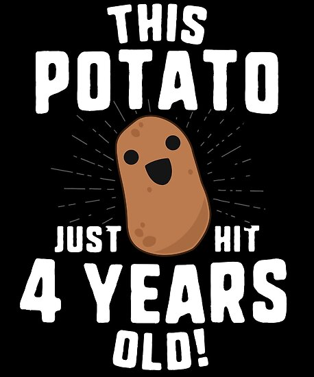 This Potato Just Hit 4 Years Old T Shirt Birthday Boy Girl By 14th Floor