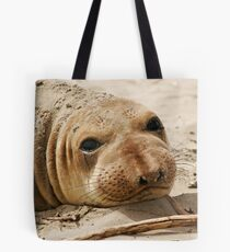 Young Elephant Seal Tote Bag