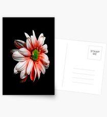 Xanth Postcards
