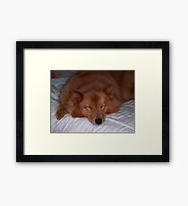 'Sleeping Cindy' Framed Print