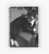 Leave me alone... Spiral Notebook