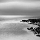 Watching... Waiting - Friendly Beaches, Tasmania. by Liam Byrne