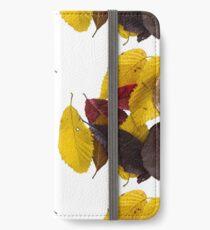 fallen leaves iPhone Wallet/Case/Skin