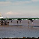 Clevedon Pier by Country  Pursuits