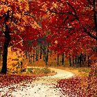 Autumn Leaves by Melissa Clason