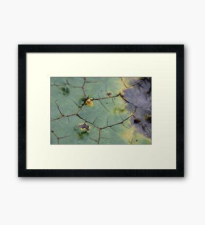 drifted leaf Framed Print