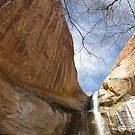 Calf Creek Falls: Near Escalante, UT by whittie011