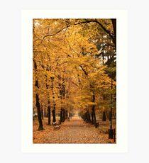Autumn park alley. Art Print