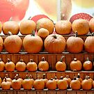 Pumpkin Line-up by Ludwig Wagner