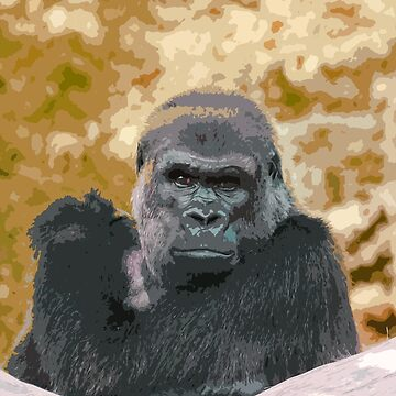 Human sight of a gorilla panasonic FZ 1000 by Olao Olavia Créations by caillaudolivier