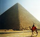Pyramids of Cairo by colourfreestyle