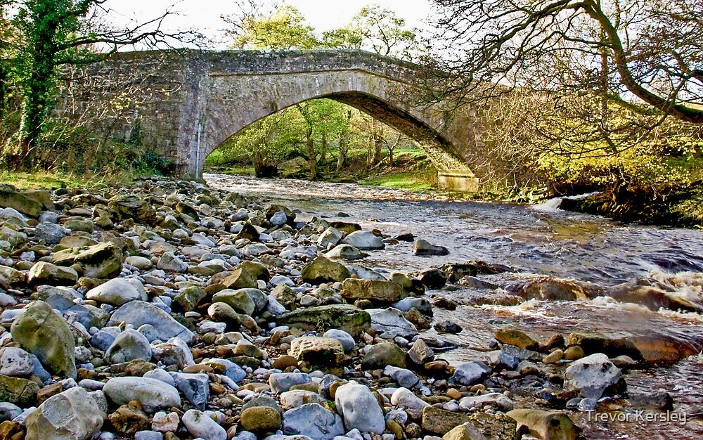 Packhorse Bridge - Coverdale by Trevor Kersley