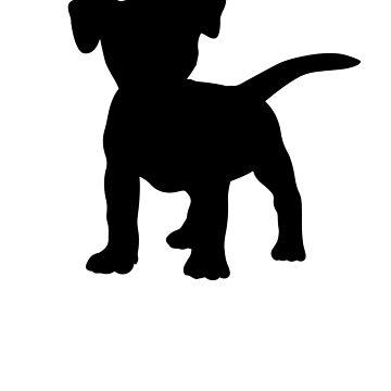Jack Russell Terrier by Pferdefreundin
