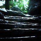 Stairway to paradise by Alan Mattison
