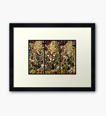 From the Sea Framed Print