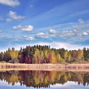 autumn landscape with colorful trees near lake with reflection by svetlanna