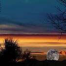 Sunset Moon by Anita Schuler