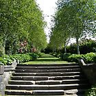 Stairway in Pollok House, Glasgow by ElsT