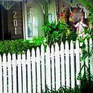 Forgotten cottage by Linda Miller Gesualdo