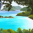 Trunk Lagoon St. John USVI A023 by Matthew Campbell