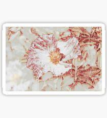 Camellia $4 Sticker