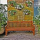Sit Awhile in the Conservatory by TonyCrehan