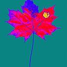 Herbst Blatt Farbenfroh von RanitasArt