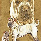 Chinese Shar Pei Alteration by BarbBarcikKeith