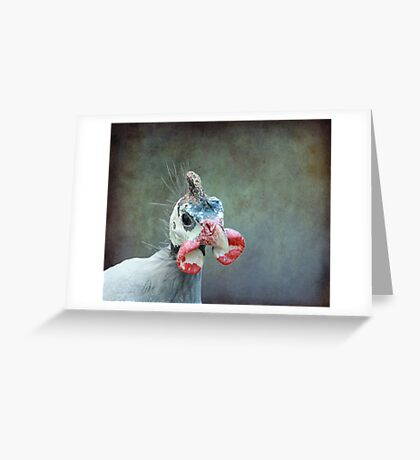 A Bird a Chicken a hmmmm.... Greeting Card