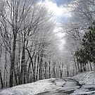 Winter on Beech Mountain by JRobinWhitley