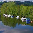 River Dart at Totnes (2) by lezvee