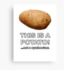THIS IS A POTATO! ...not a synthesizer. Canvas Print