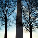 Washington Monument by Len Bomba