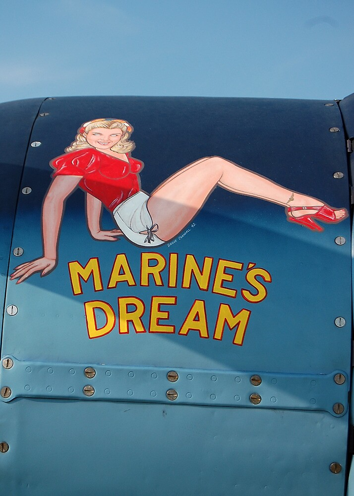 Marines Dream by Steven Squizzero