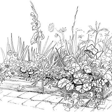 Nasturtiums in the garden by Mikhalevich