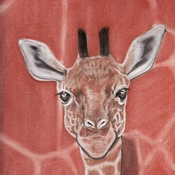 Baby Giraffe by MagsWilliamson
