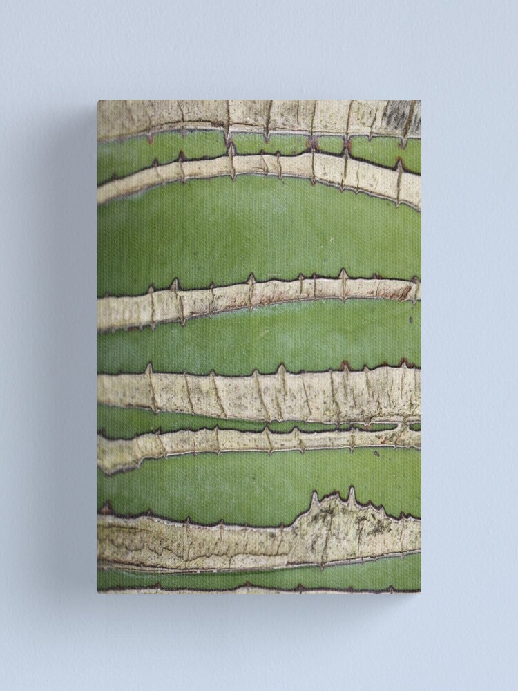 Alternate view of Green lines Canvas Print