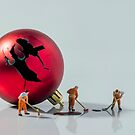 Christmas Call-Out by Alan Organ LRPS