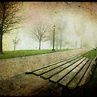 Primrose bench by Sonia de Macedo-Stewart